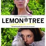 les_citronniers,3